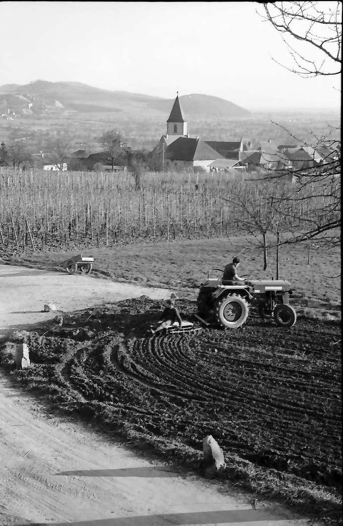 Burkheim: Traktor mit Egge, Hintergrund Ort, von oben, Bild 1