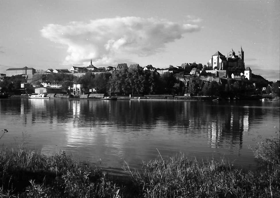 Breisach: Rhein mit Münster und ganze Stadt vom elsässischen Ufer, Bild 1
