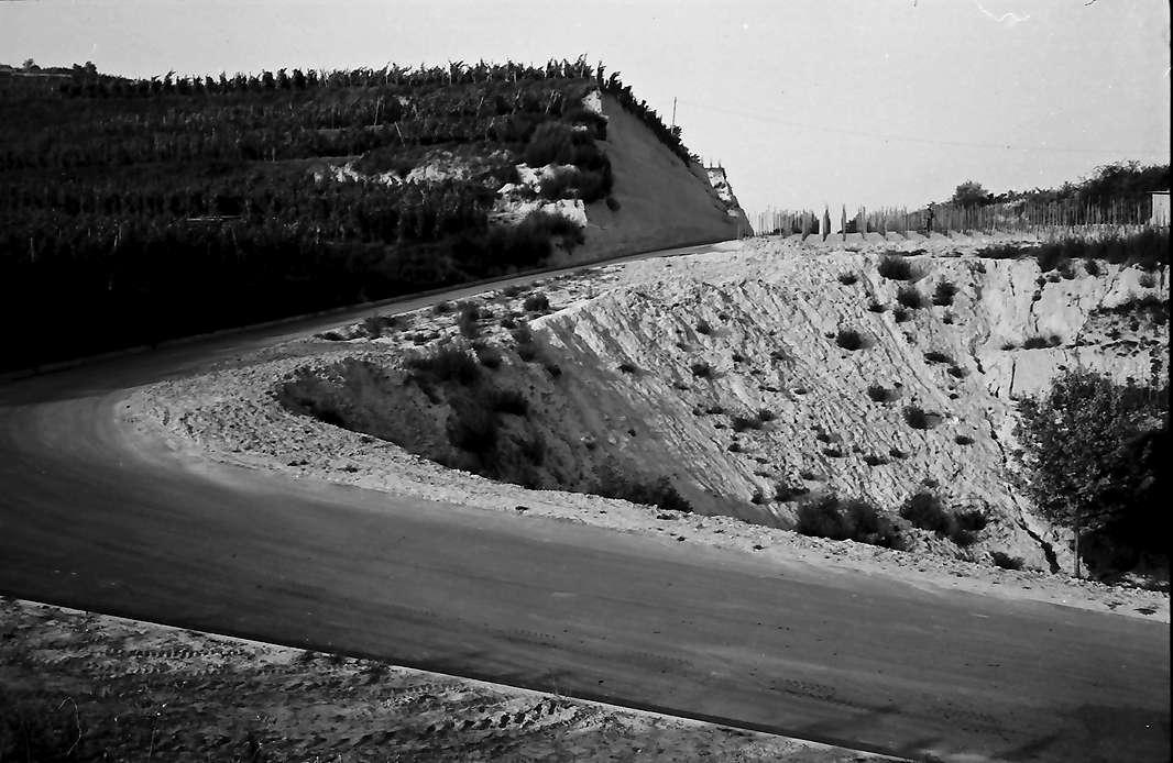 Ihringen: Wirtschaftsweg zum Weinberg (Eicke), Bild 1