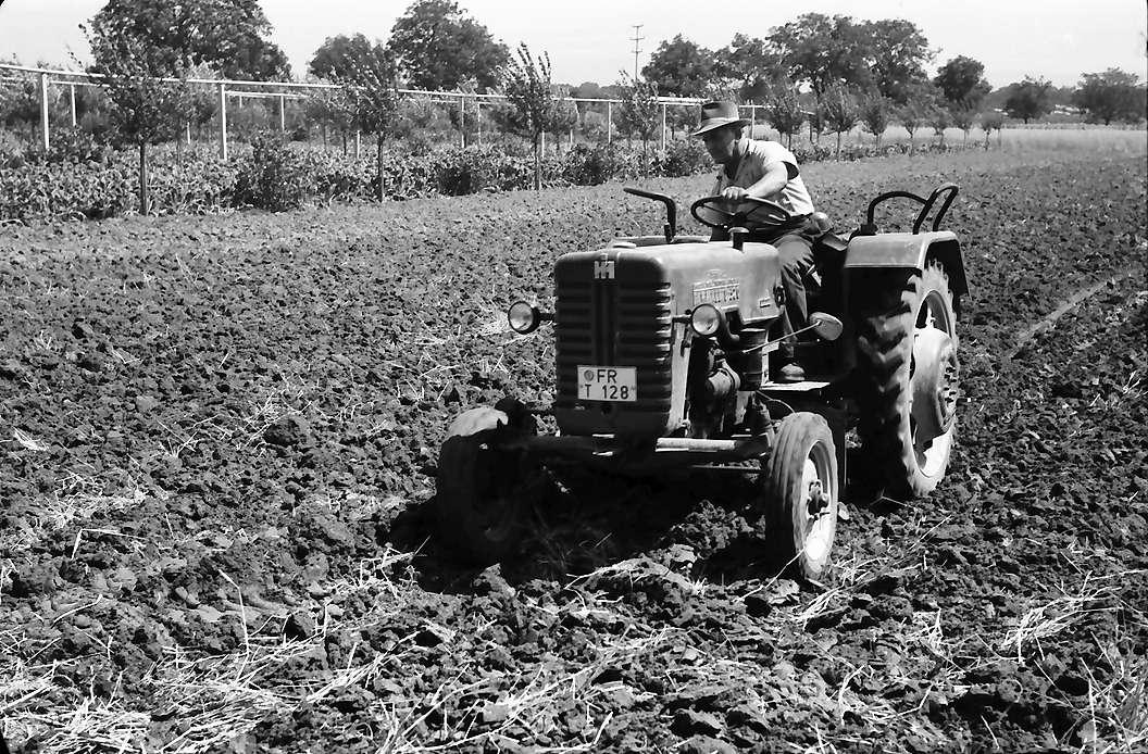 Ihringen: Traktor auf Feld, Bild 1