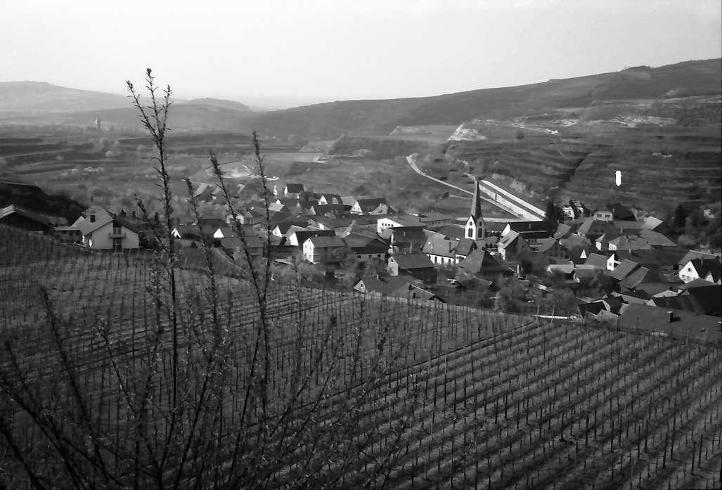 Bickensohl: Von südlicher Höhe auf den Ort, Bild 1