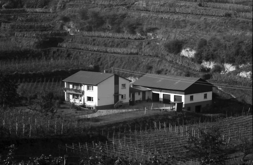 Bickensohl: Aussiedlerhof in der Mulde, Bild 1