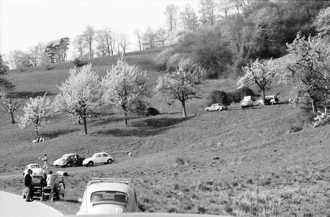 Ebringen: Rast an der Straße unter Blütenbäumen, bei Berghauser Kapelle, Bild 1