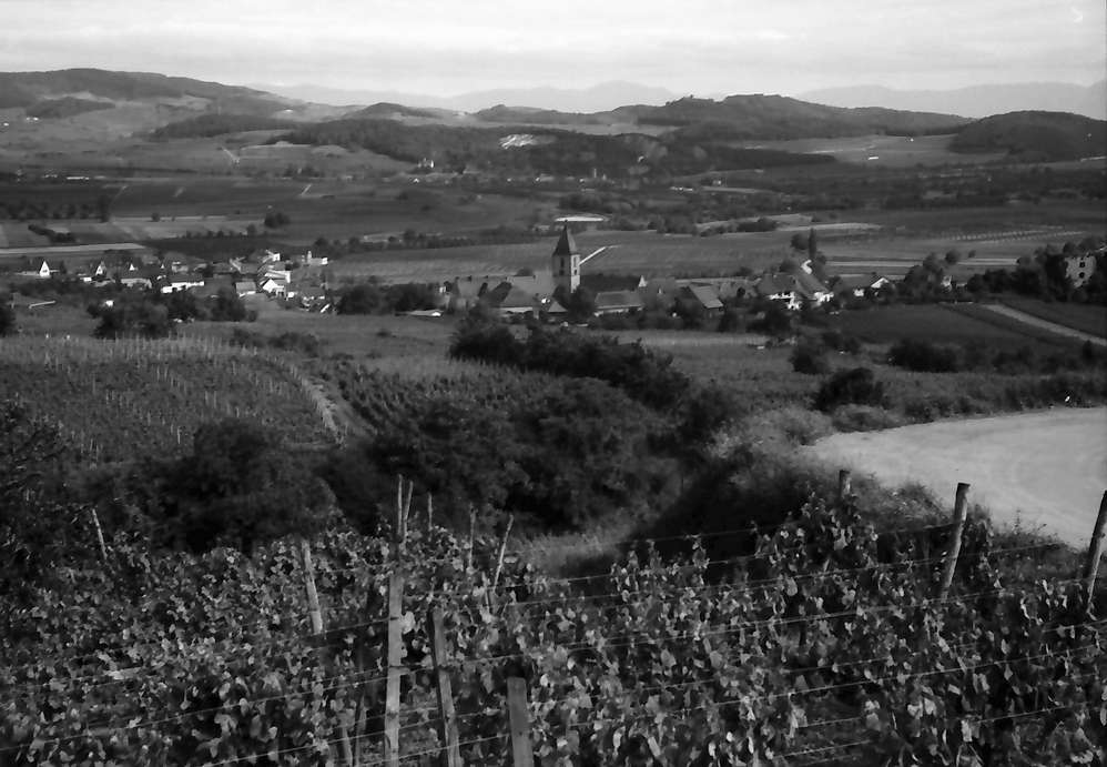 Burkheim: Vom Berg auf Ort und Kaiserstuhl, Bild 1