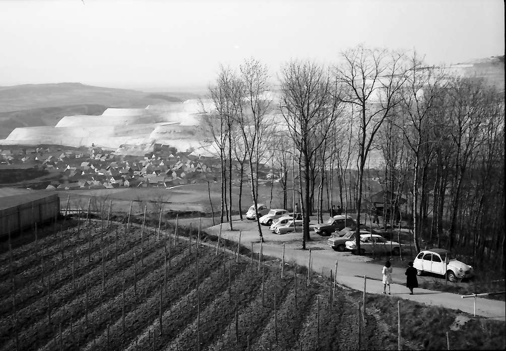 Bickensohl: Waldparkplatz, Bild 1