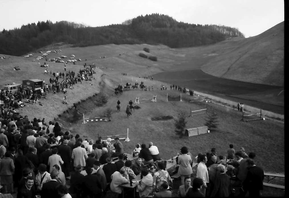 Vogtsburg: Reitturnier, Publikum auf den Hängen, Bild 1