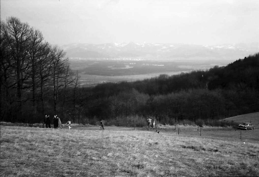 Vogtsburg: Vom Kaiserstuhl gegen verschneiten Schwarzwald, Bild 1