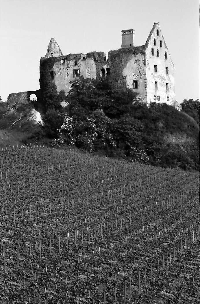 Burkheim: Schwendi-Schlossruine, Bild 1