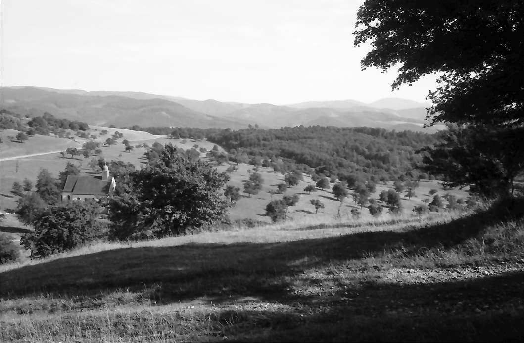 Ebringen: Vom Kienberg zur Berghauser Kapelle und Schwarzwald, Bild 1