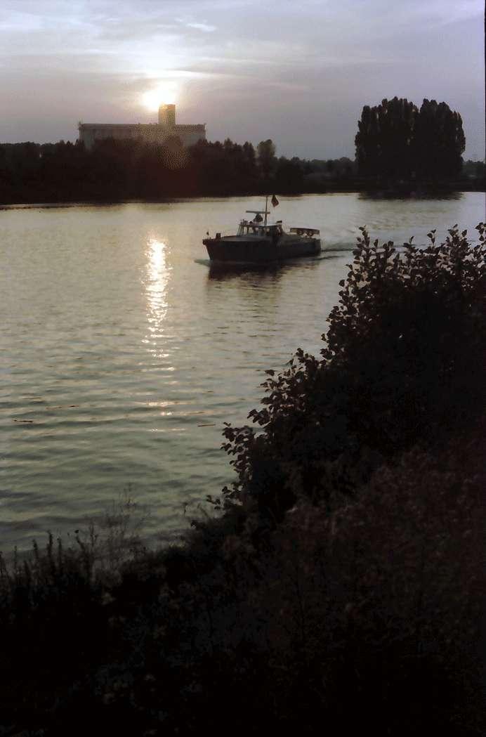 Breisach: Sonnenuntergang über dem Rhein, Bild 1