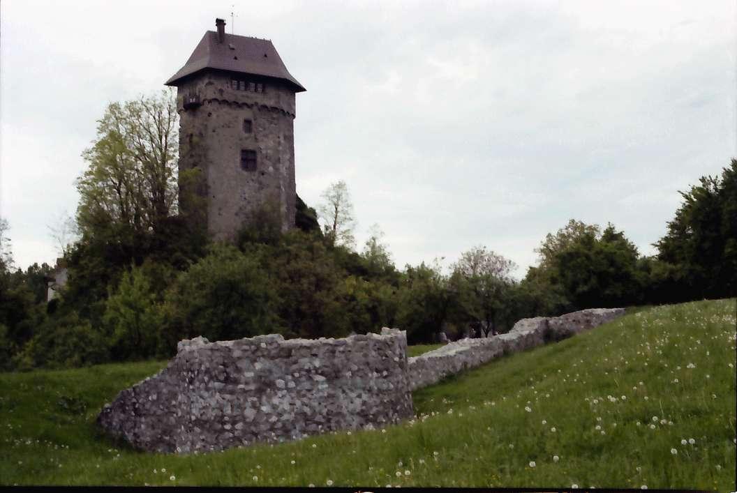 Jechtingen: Burg Sponeck, Bild 1