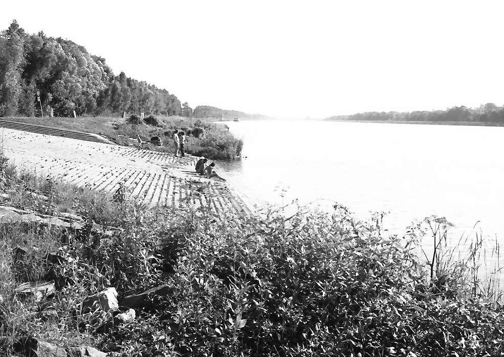 Wyhl: Rampe am Rhein, Bild 1