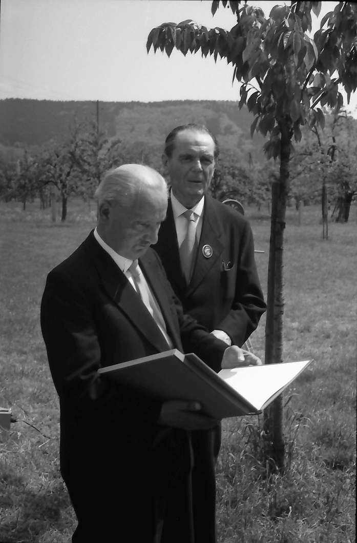Hausen: Prof. Heidegger und O. E. Sutter auf Wiese bei Fernsehaufnahme, Bild 1