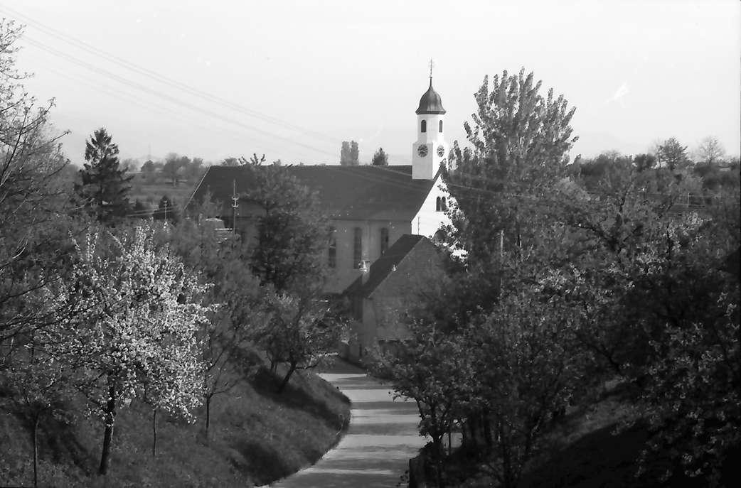 Freiburg, Waltershofen: Straße mit Blütenbaum und Kirche, Bild 1