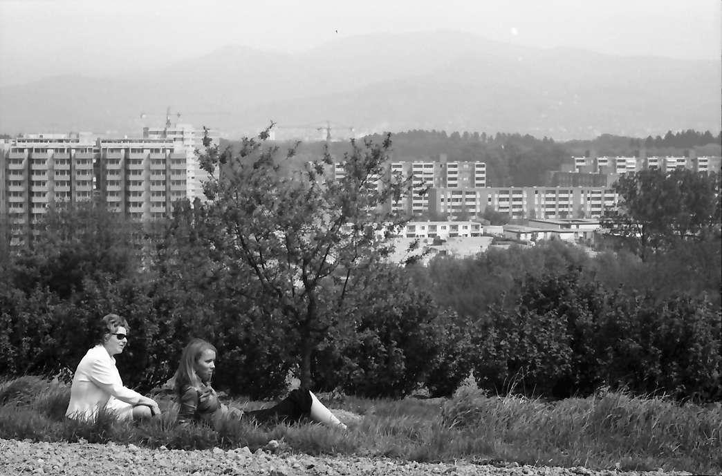 Freiburg, Lehen: Vom Lehener Berg auf Landwasser mit Spitzli und Mädchen im Gras, Bild 1