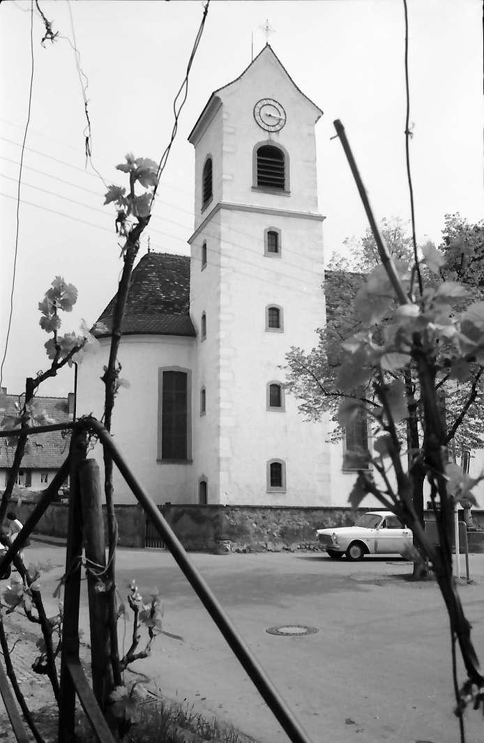 Freiburg, Betzenhausen: Kirche durch Weinranken, Bild 1