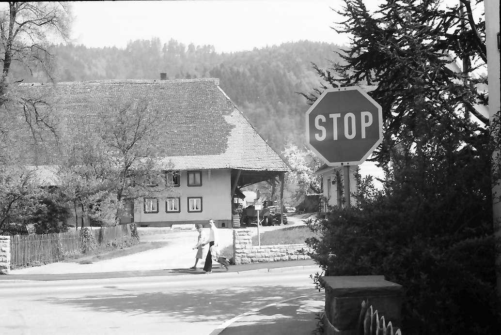 Freiburg, Ebnet: Schwarzwaldhaus und Stopschild, Bild 1