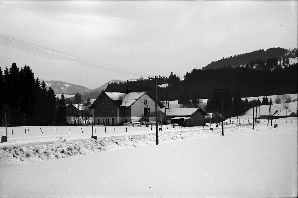 Leutkirch: Verschneite Straße bei Leutkirch, Bild 1