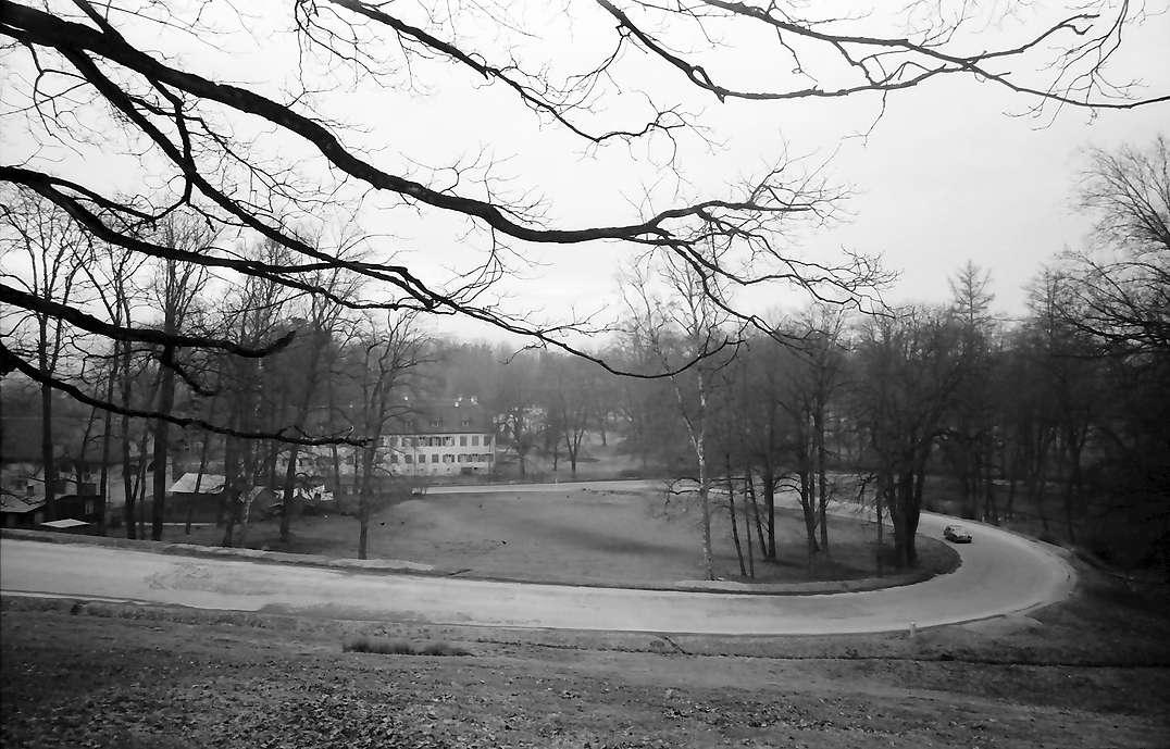 Krauchenwies: Kurve im Schlosspark, Bild 1