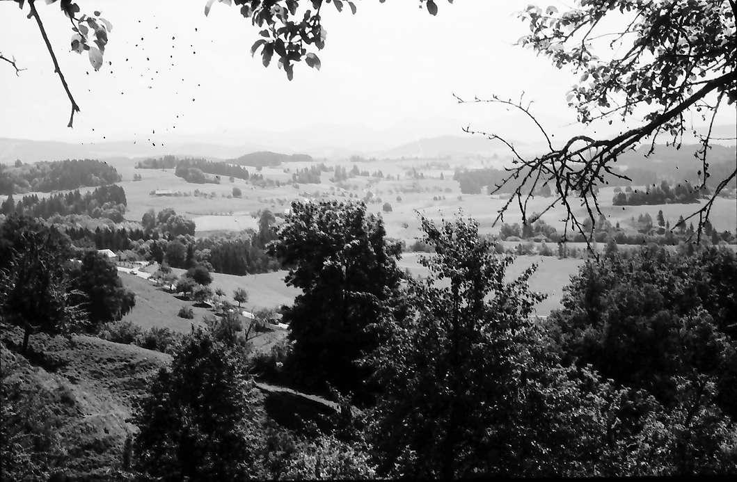 Eglofs: Blick über das Alpenvorland auf Eglofs, Bild 1