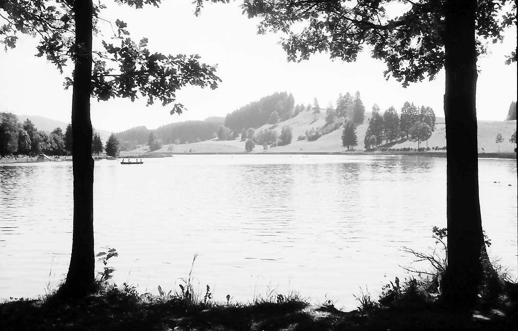 Großholzleute: Hengelesweiher bei Großholzleute, Bild 1