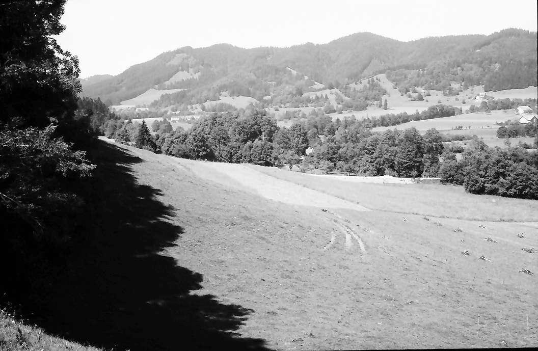 Großholzleute: Schwarzer Grat (1118 m), Bild 1