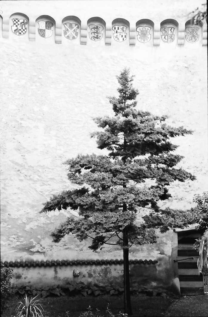 Waldburg: Die Waldburg, Wappen am Giebel im Hof, Bild 1