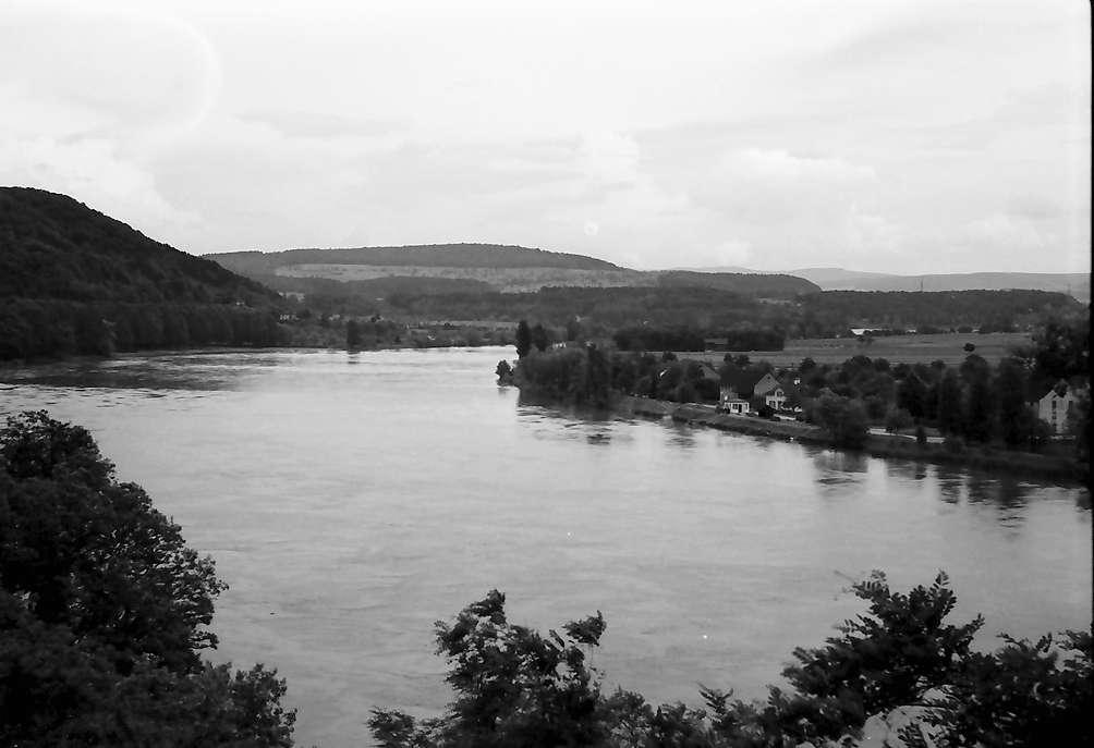 """Waldshut: Rheinblick, Stromabwärts von der Terrasse """"Rebstock"""", Bild 1"""