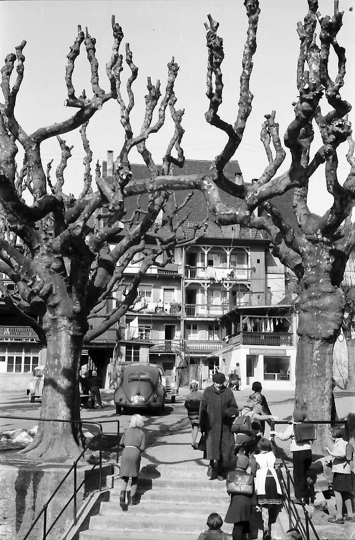 Waldshut: Platz mit kahlen Bäumen, mit Treppe, Bild 1