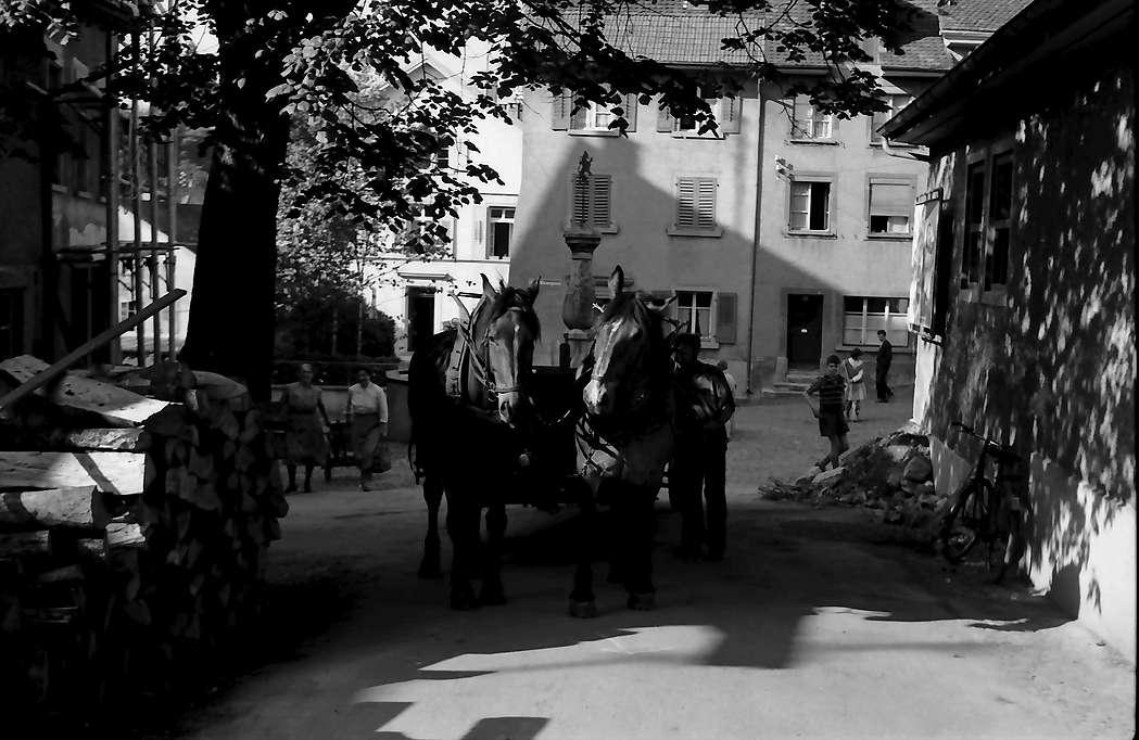 Laufenburg: Pferdegespann am Oberen Wasenplatz, Schweiz, Bild 1