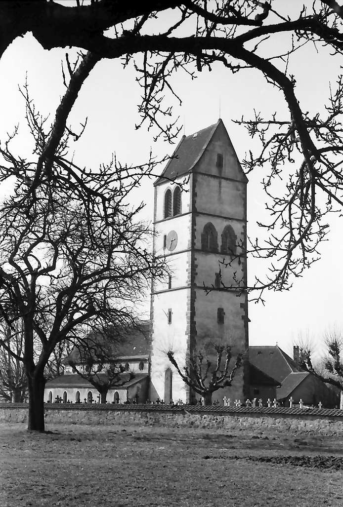 Hochsal: Alte Hotzenkirche, Vordergrund kahle Bäume, Bild 1