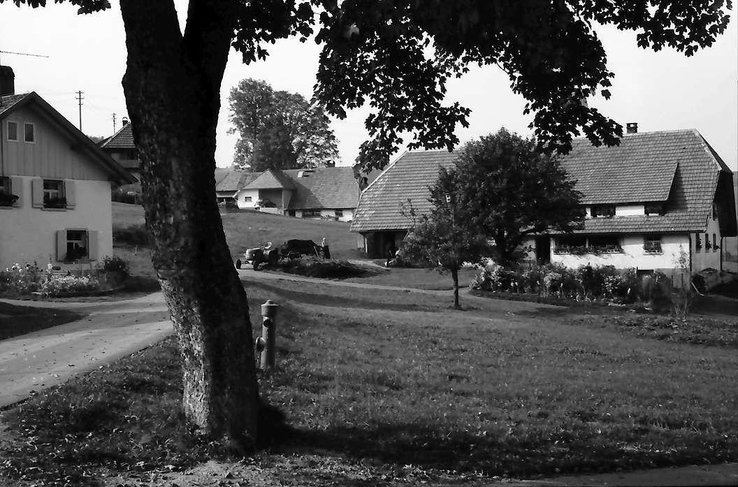 Herrischried: Höfe bei Rütte, Bild 1