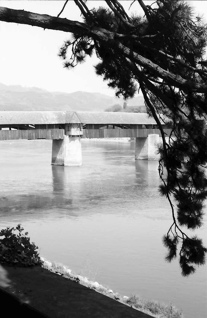Bad Säckingen: Alte Rheinbrücke vom Schlosspark aus, Vordergrund Baumäste, Bild 1