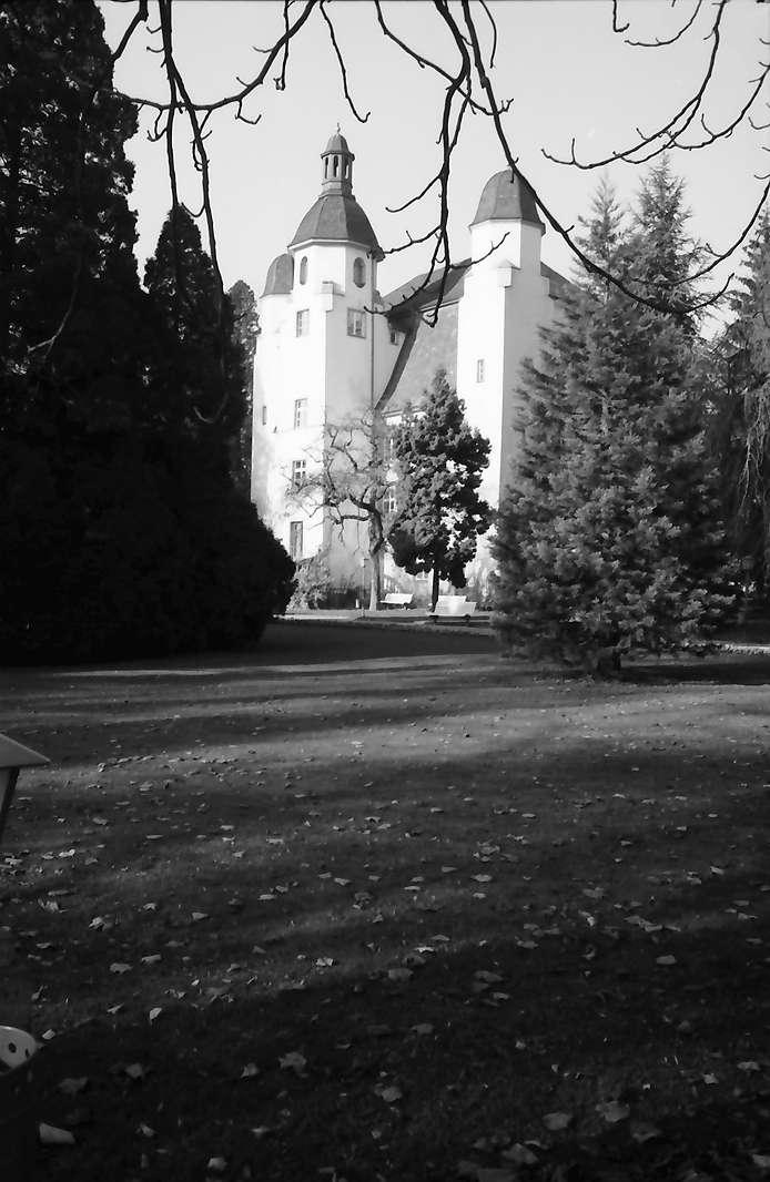 Bad Säckingen: Trompeterschloss vom Park aus, Bild 1