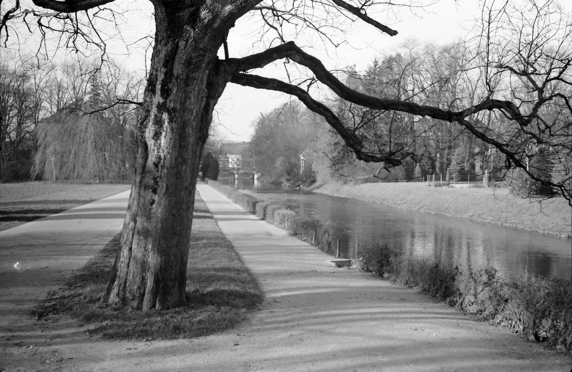 Immendingen: Donauversickerung bei Immendingen, Bild 1