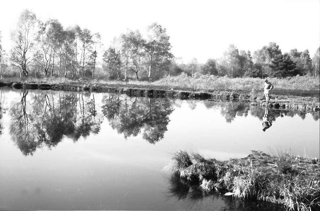 Schwenninger Moos (Neckarquelle) bei Schwenningen, Junge am Ufer, Bild 1