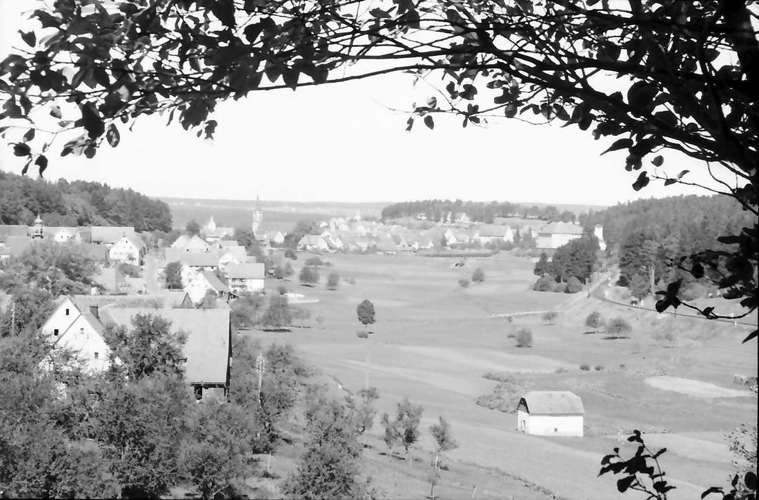 Löffingen: Blick von der Höhe auf Seppenhofen und Löffingen, Bild 1