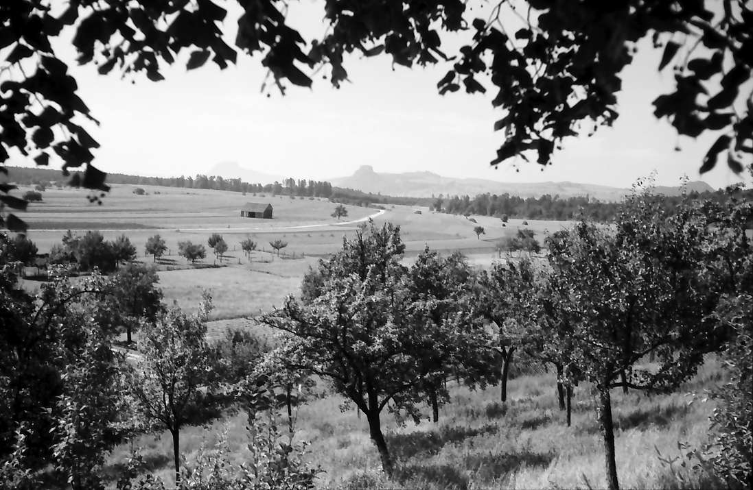 Aach: Hegaulandschaft, Bild 1