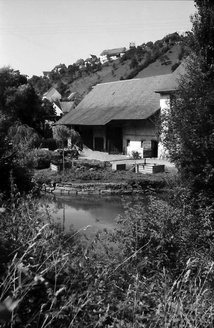Aach: Häuser an der Aach, Bild 1