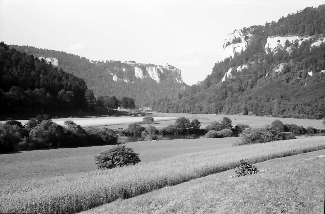 Werenwag: Donautal mit Burg Werenwag, Bild 1