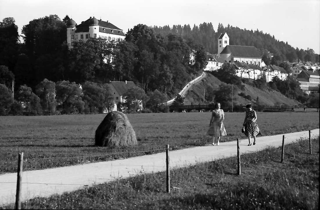 Mühlheim (Donau): Blick von der Niederung auf Schloss, Bild 1