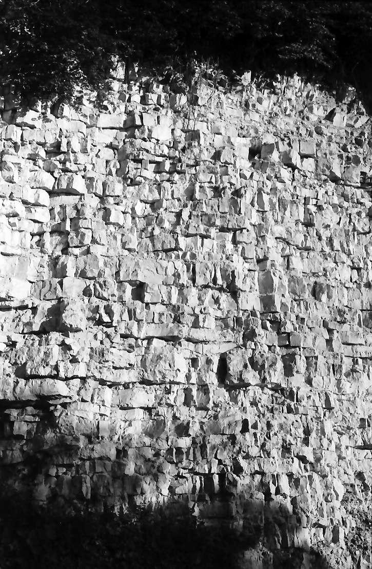 Nendingen: Gesteinsformation an einem Hang im Donautal bei Nendingen, Bild 1