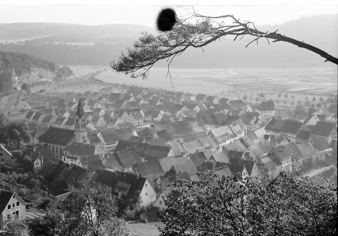 Fridingen: Blick von oben auf Fridingen, Vordergrund Kiefernast, Bild 1