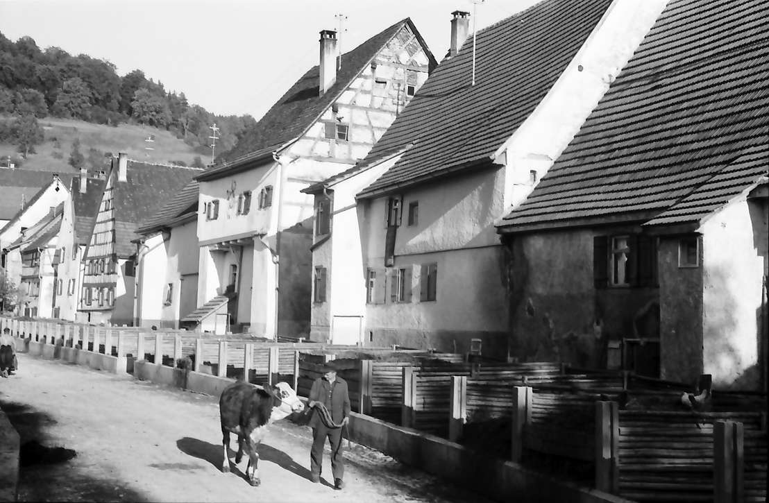 Fridingen: Die Miststraße, Bild 1