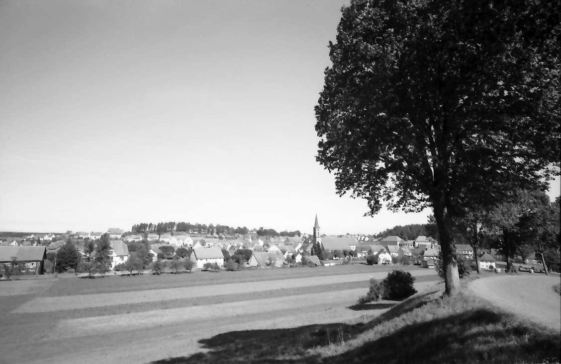 Löffingen: Zug hinter Bäumen, Bild 1