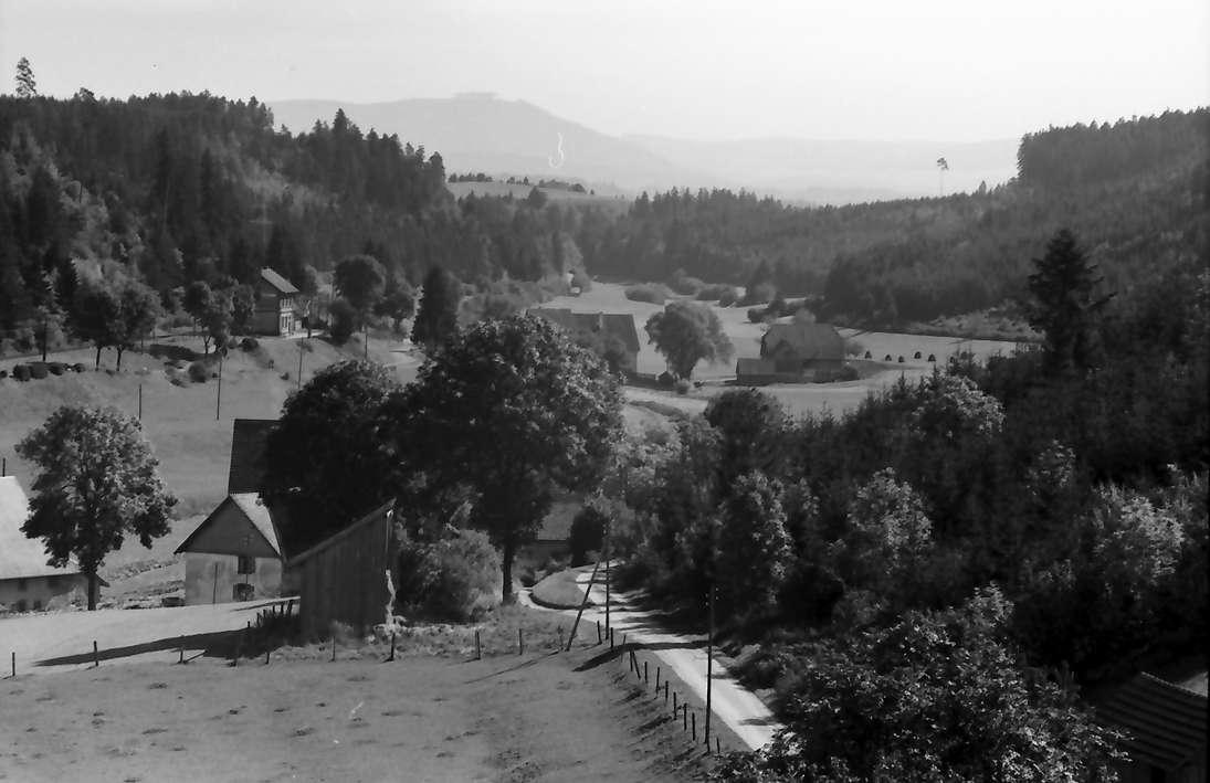 Seppenhofen: Blick ins Tränketal, Bild 1