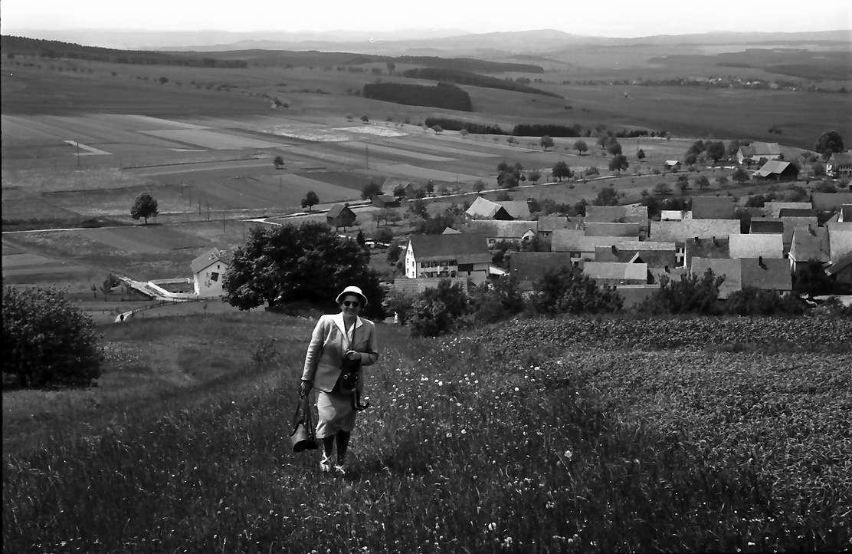 Fürstenberg: Blick vom Füstenberg auf den Ort, Spitzli im Gras, herkommend, Bild 1
