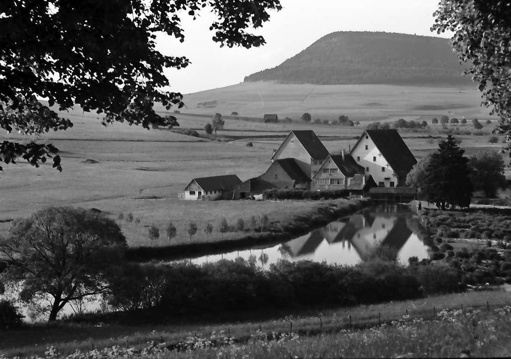 Geisingen: Mühle an der Donau, Vordergrund Äste, Bild 1
