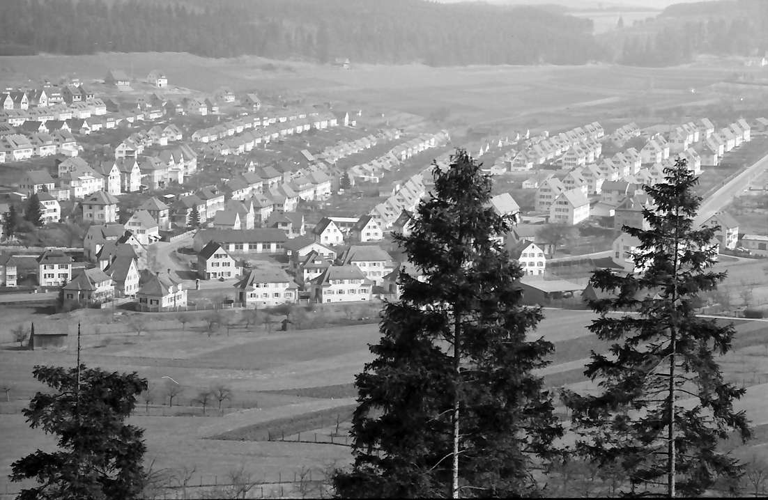 Tuttlingen: Blick von der Ruine Honberg auf Siedlung, Bild 1