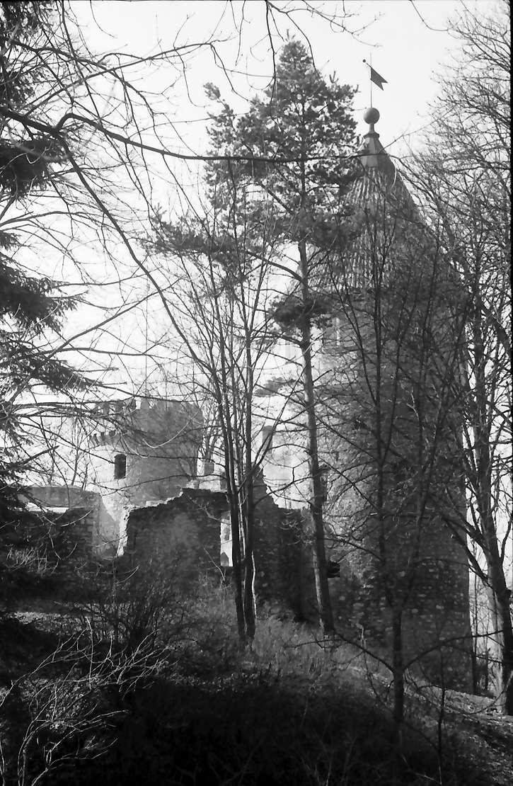 Tuttlingen: Turm der Ruine Honberg zwischen Bäumen, Bild 1